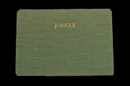 Jungle by Alex