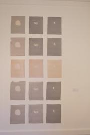Detritus Series (Handmade Paper)
